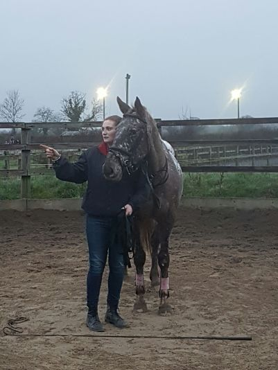 Orla & Coco finishing up a lunging session