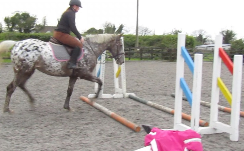 Coco's First Private Lesson ~ Lessons withCoco