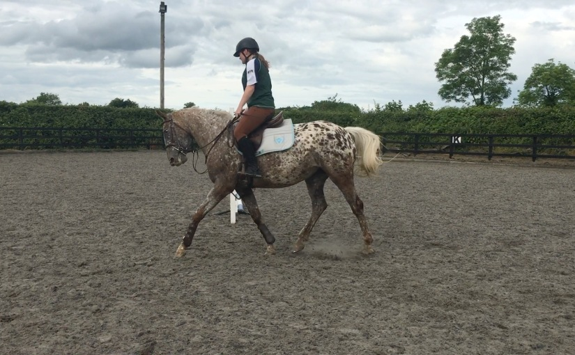 Keeping them Busy & Getting the Stride Right ~ Lessons withCoco