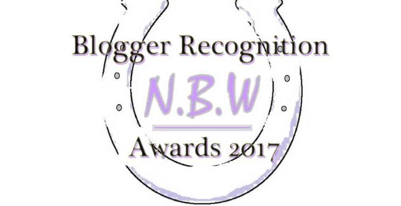 Blogger Recognition Award2017