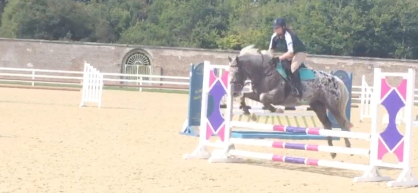 Coco_jumping1
