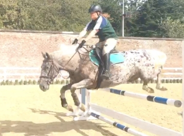 Coco_jumping4