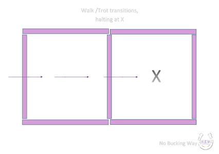 NBW Square halting-page-001