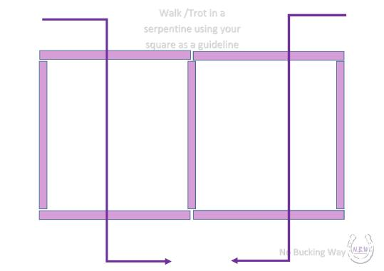 NBW Square Serrpentine-page-001
