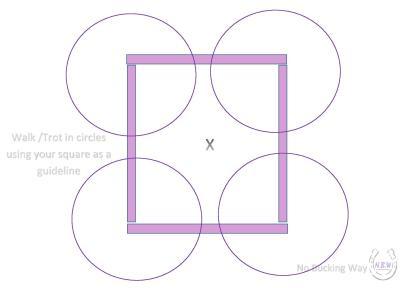 NBW Square trot circles-page-001