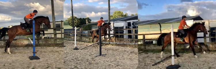 August Monthly Exercise #2 – Work That HindEnd