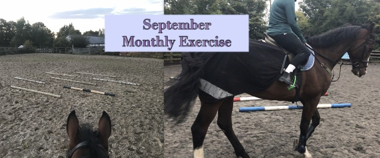 September Monthly Exercise – Pole ToPole