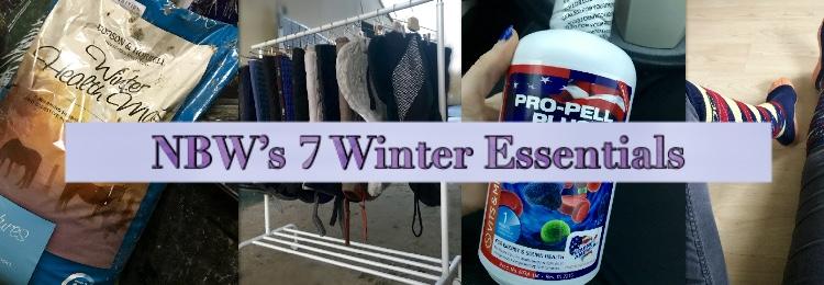 7 Winter Essentials