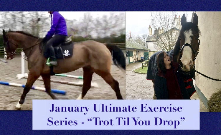 """January Ultimate Exercise – """"Trot Til YouDrop"""""""