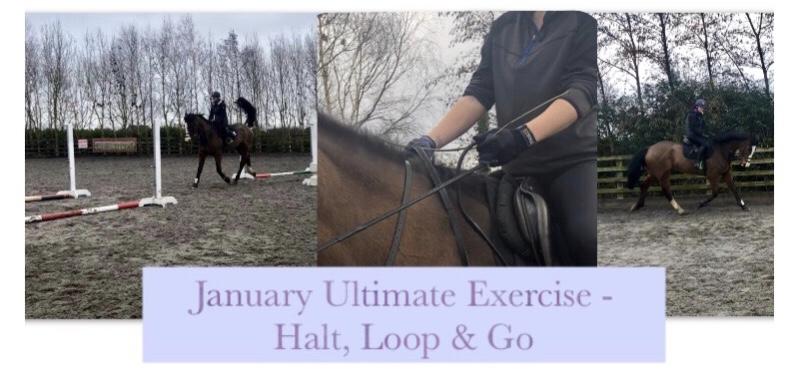 January Ultimate Exercise – Halt, Loop &Go!