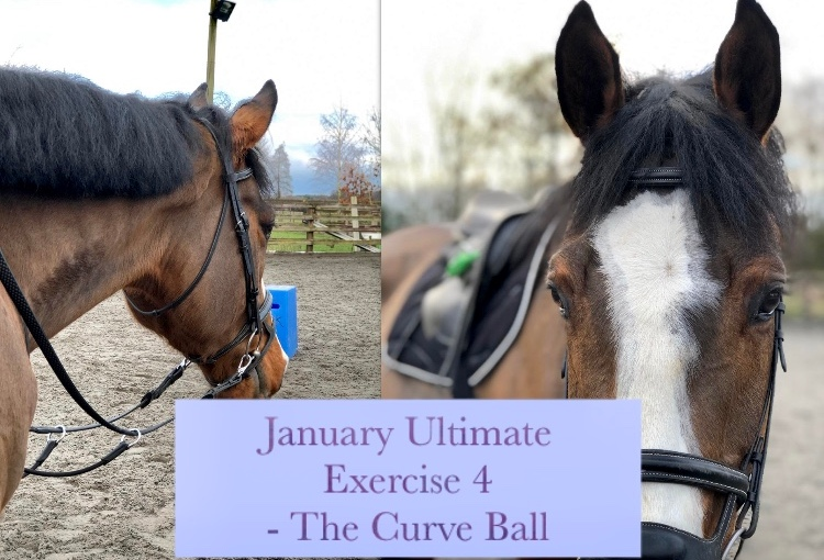 """January Ultimate Exercise – """"The CurveBall"""""""