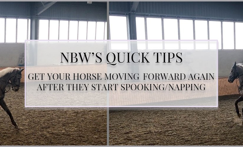 Quick Tips: Get Your Horse Moving Forward Again After they Start Spooking/Napping