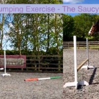 June Jumping Exercise - The Saucy Snake