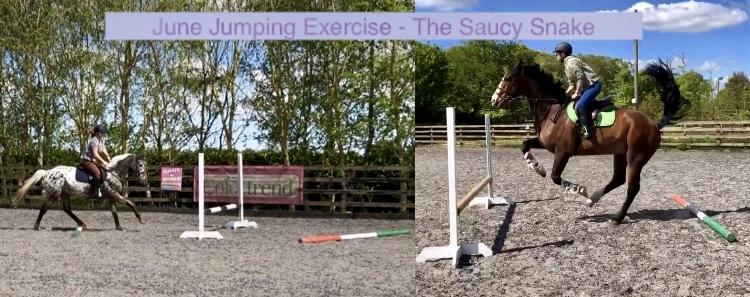 June Jumping Exercise – The SaucySnake