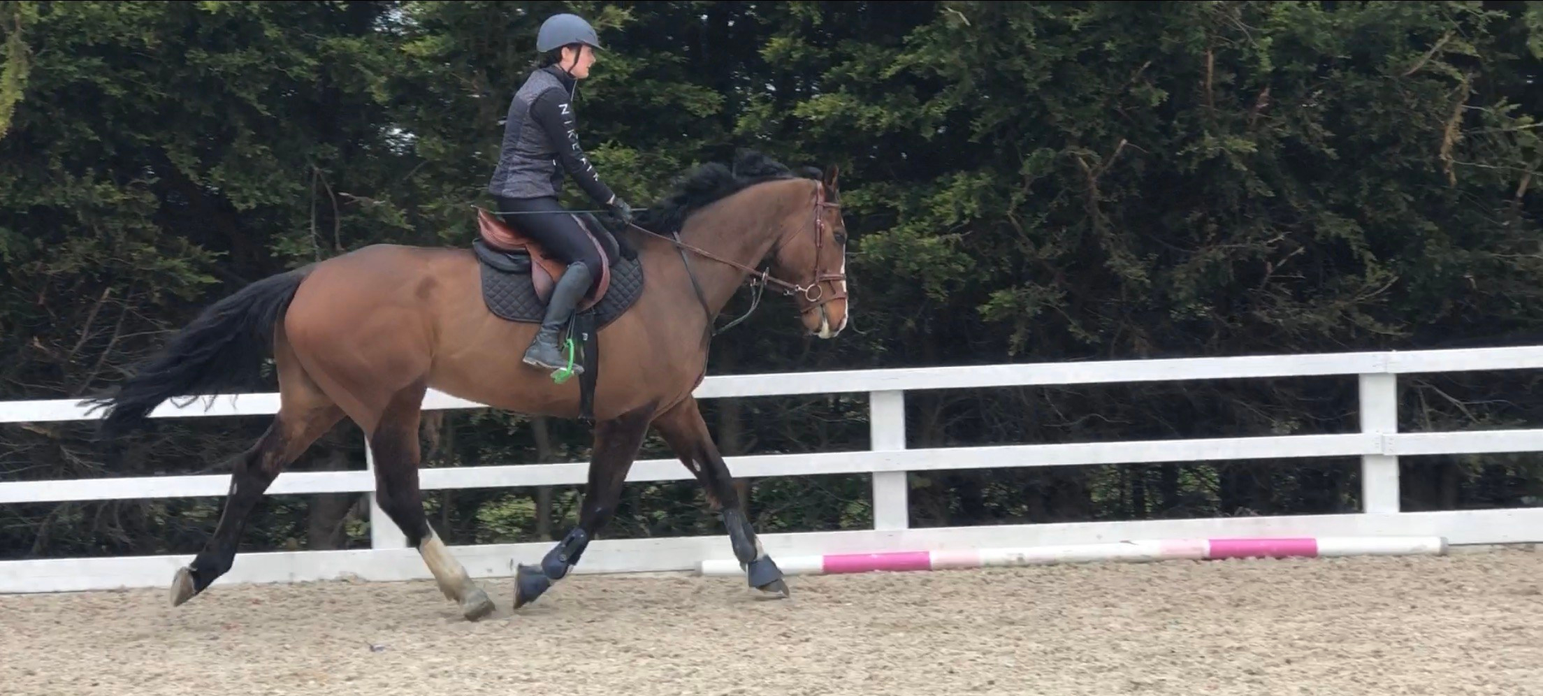 Small Fixes With Big Results 8 Tips To Improve My Jumping No Bucking Way