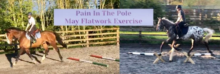 May Flatwork Exercise – Pain in thePole!