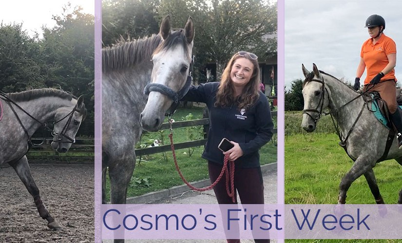 Cosmo's First Week