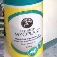 Product Review - Equitop Myoplast