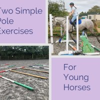Two Simple Pole Exercises for Young Horses