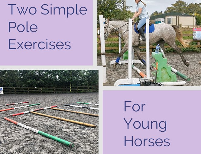 Two Simple Pole Exercises for YoungHorses