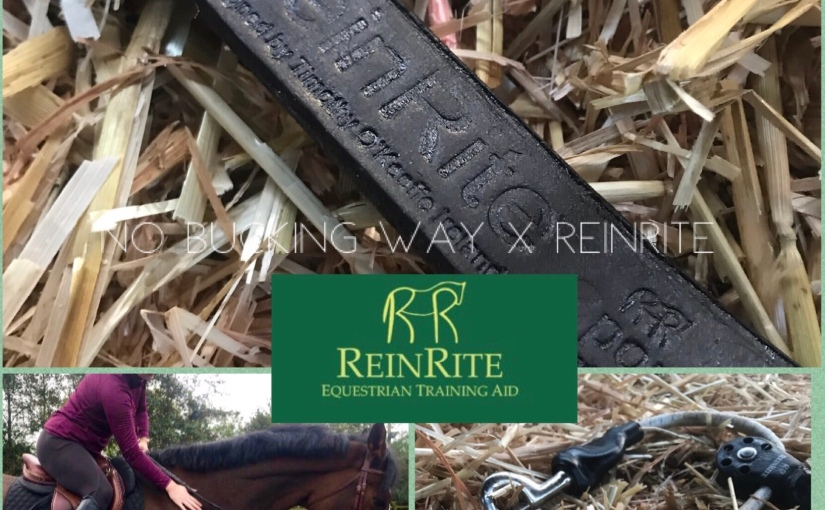 Product Review –ReinRite