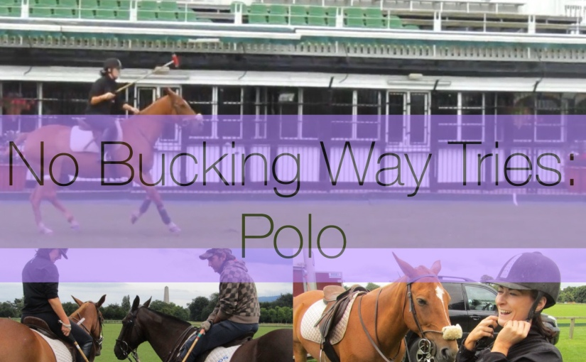 No Bucking Way Tries:POLO