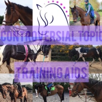 Controversial Topic: Training Aids