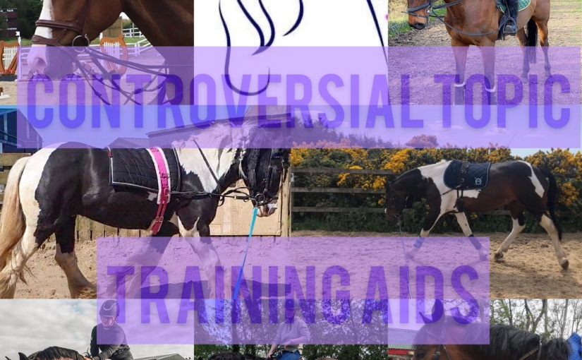 Controversial Topic: TrainingAids