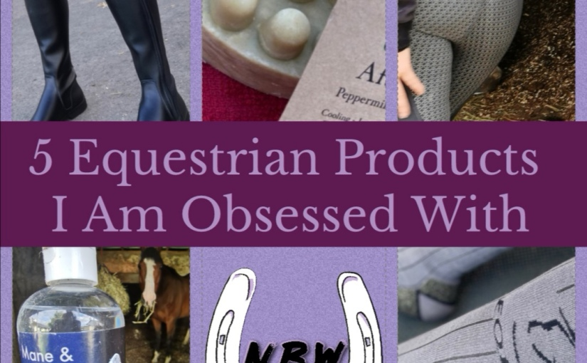 5 Equestrian  Products I Am ObsessedWith
