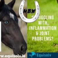 Equisolv - Premium Equine CBD