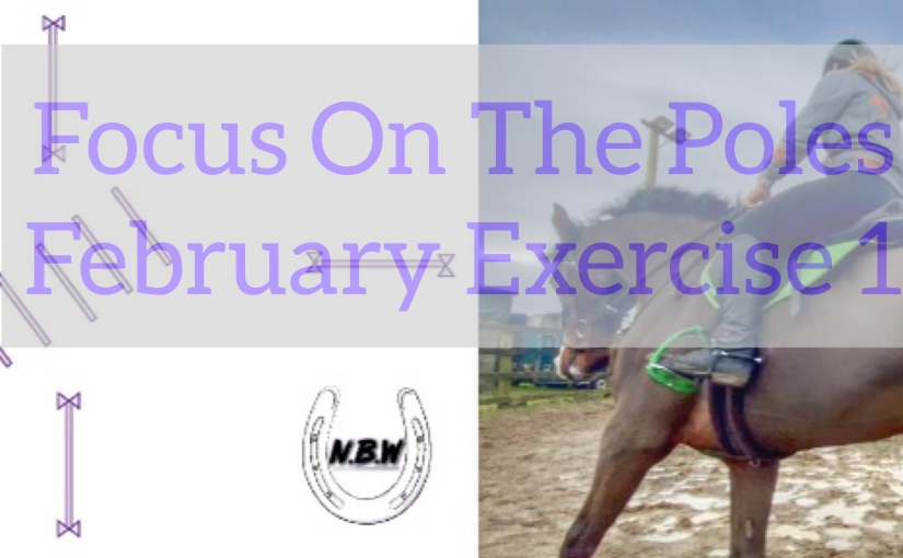 Focus On The Poles – February Exercise1